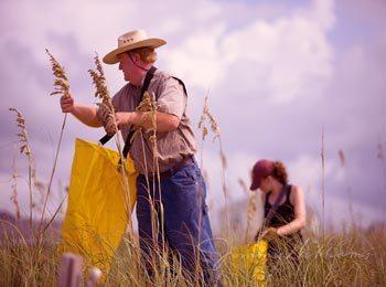 农夫和他的两个女儿的故事