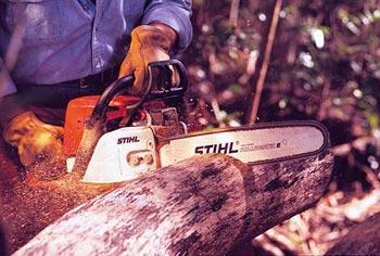 伐木工人比赛