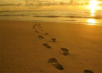 海滩上的足迹