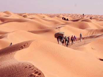 在沙漠迷失的商队
