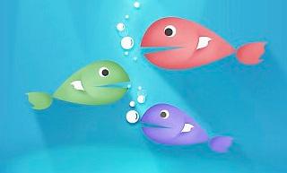 三种不同的鱼