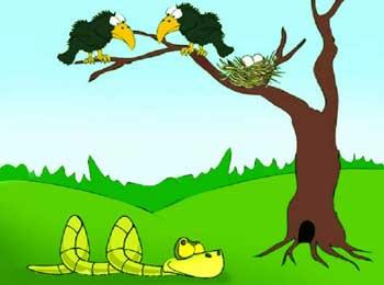 乌鸦与眼镜蛇